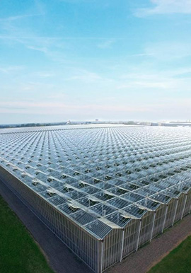 GREENHOUSE INDUSTRY